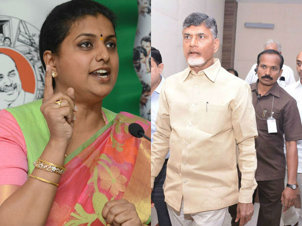 roja fired on tdp