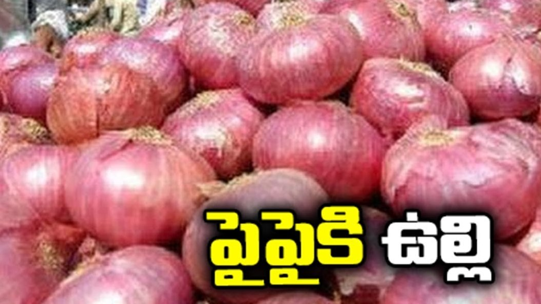 Onions Rs.100/-