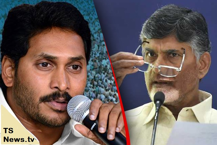 TDP FIRST IN MEDIA