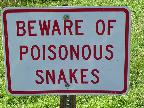 KRISHNA PEOPLE ARE BEWARE OF  SNAKES
